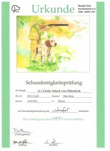 SFP_Checko_Urkunde